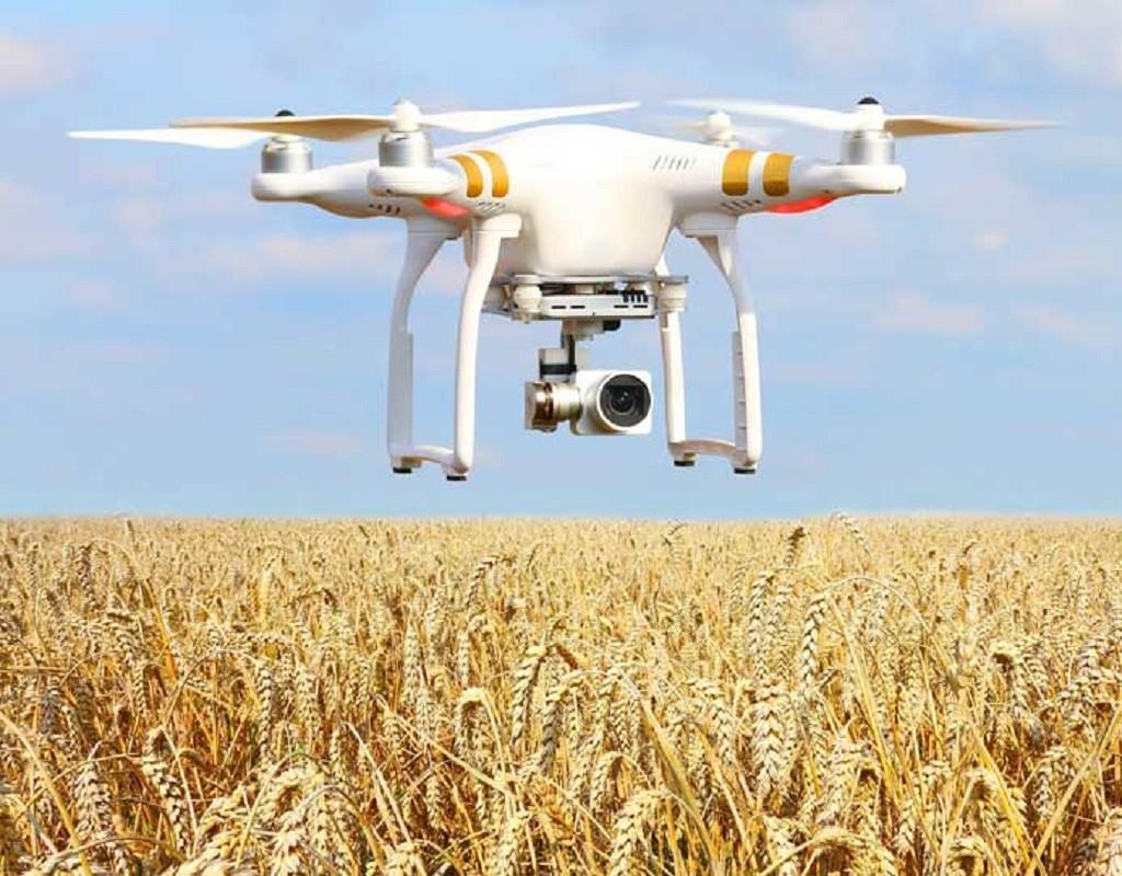 农业新创Intello Labs融获200万种子轮融资